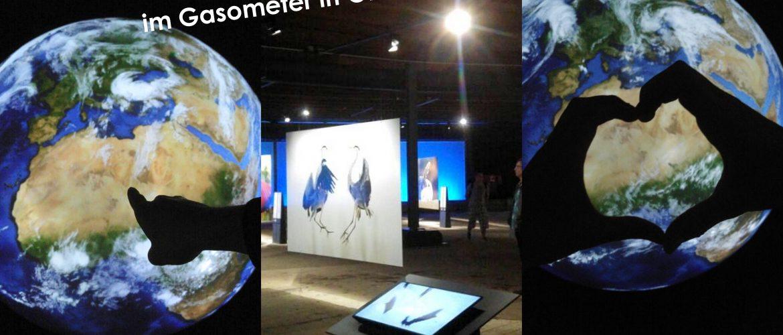Ausstellung---Wunder-der-Natur--Gasometer-titelbild
