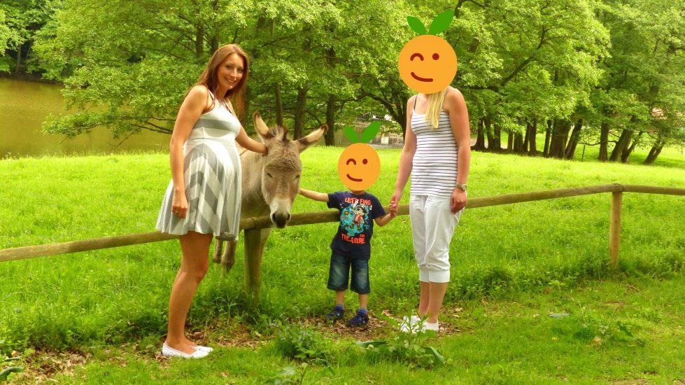 tierpark_sababurg_hofgeismar_tiere_familienausflug
