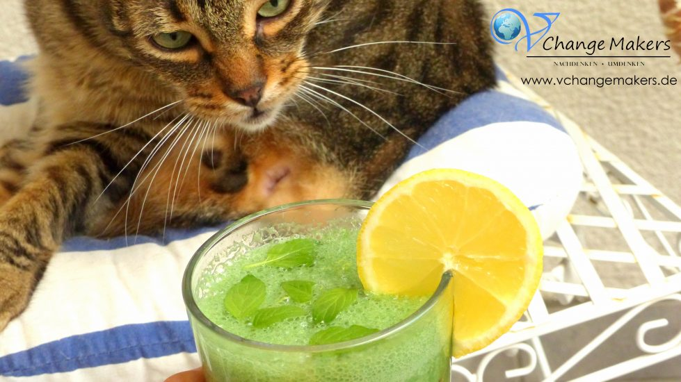 green_smoothie_grüner_smoothie_Shake1