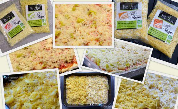 bio veg käse aus frankreich - produkttest