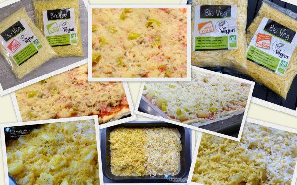 Produkttest: Veganer Käse von Bio Veg + Rezept Kartoffelgratin