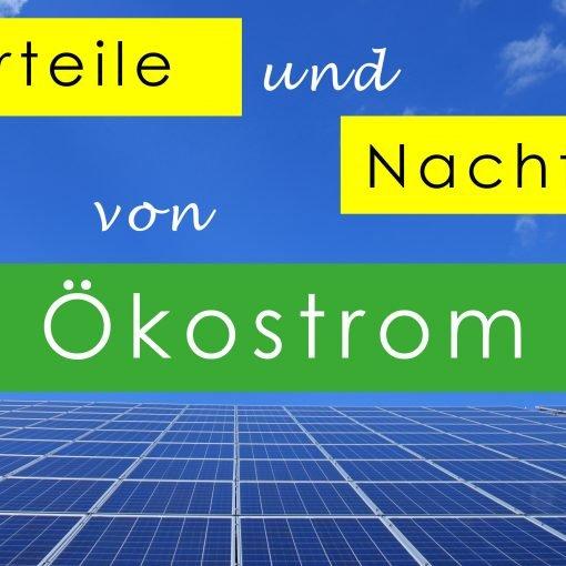 Es war noch nie so wichtig über seine Energieversorgung nachzudenken wie jetzt. Mit Ökostrom, insbesondere veganem Strom, die Umwelt und Tiere schützen