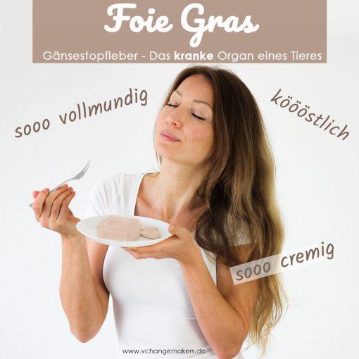 Foie Gras - Gänsestopfleber gilt als Delikatesse, dabei ist es ein krankes Organ eines zu Tode gefolterten Tieres. Erfahre mehr über das brutale Stopfen