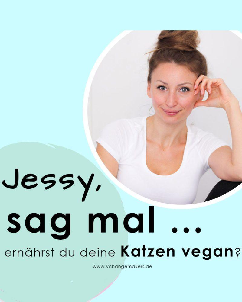 Vegane Katzenernährung ist ein heiß umstrittenes Thema unter Veganern. Erfahre nun, weshalb ich meine Katzen definitiv nicht vegan ernähre.
